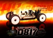 D817 1/8 Competition Nitro Buggy